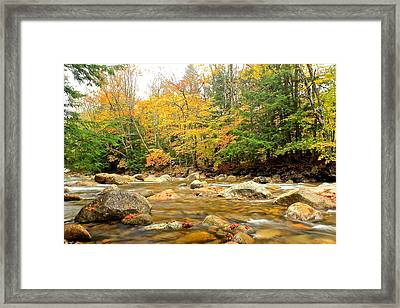 Framed Print featuring the photograph River In Fall Colors by Amazing Jules