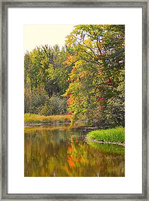 River In Fall Framed Print by Rhonda Humphreys