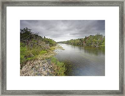 River In Ocala National Forest Florida Framed Print by Scott  Leslie