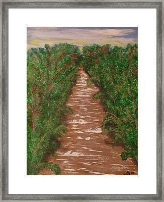 River In Tennessee Framed Print by Melanie Blankenship