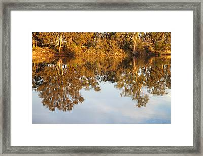 River Murray Reflections Early Evening Framed Print by Carole-Anne Fooks