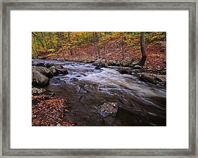 River Of Color Framed Print by Dave Mills
