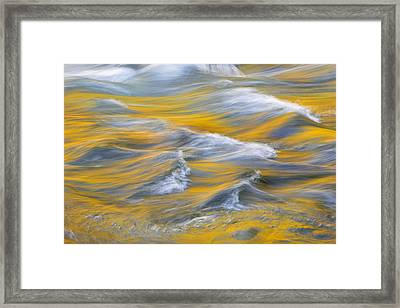 River Of Gold Framed Print by Mike Lang