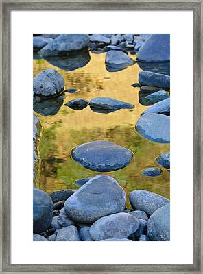 Framed Print featuring the photograph River Of Gold by Sherri Meyer