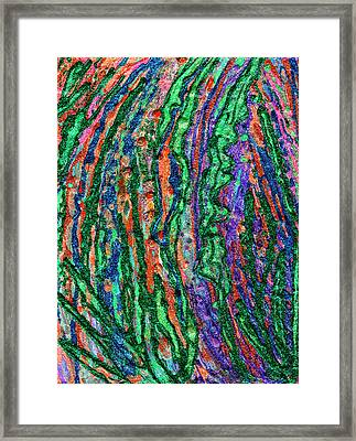 River Of Grass Framed Print