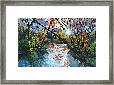 River Of Joy Framed Print by Lynn Hansen