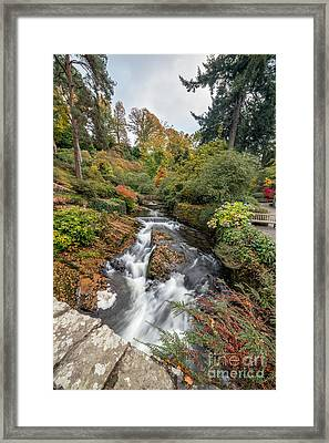 River Of Life Framed Print by Adrian Evans