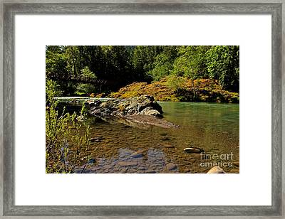 River Of Love  Framed Print by Tim Rice