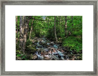 Jones Gap State Park South Carolina Framed Print
