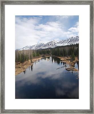 River Reflection Framed Print