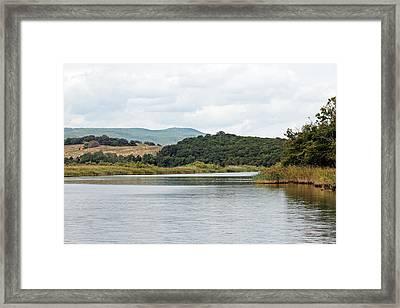 River Ropotamo Framed Print by Tony Murtagh