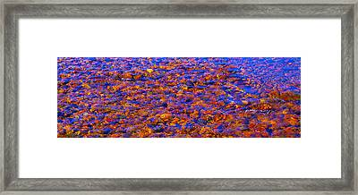 River Song Abstract Framed Print