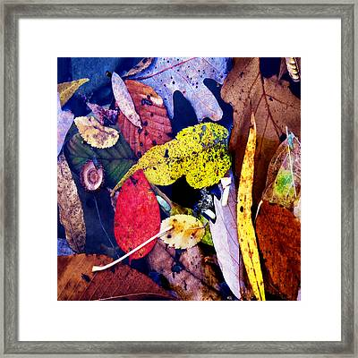 River Tea Framed Print by David Walker