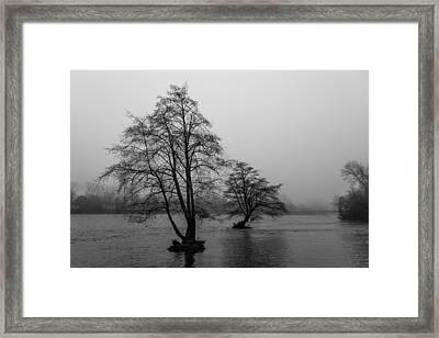 River Trees And Fog Framed Print by John Daly