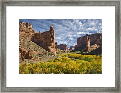 River Valley And Spider Rock Canyon De Framed Print by Tom Vezo