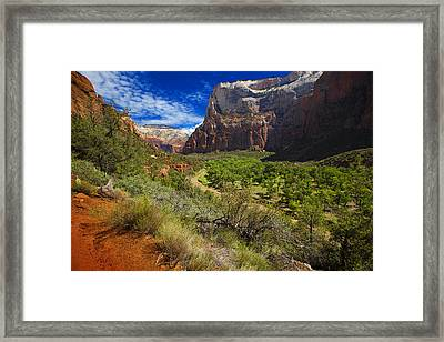 Framed Print featuring the photograph River View In Zion Park by Richard Wiggins