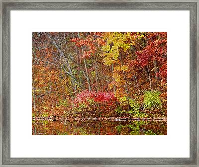 Riverbank Beauty Framed Print by James Hammen