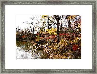 Riverfront In Fall Framed Print by Jocelyne Choquette