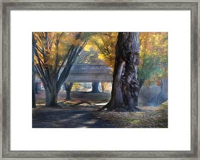 Riverfront Park Framed Print by Lori Deiter