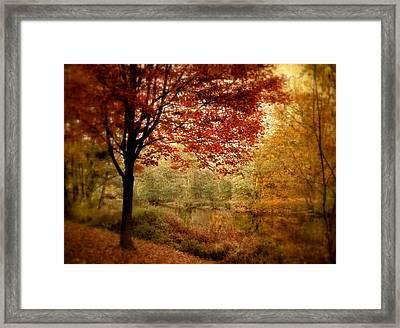 Riverside Maple Framed Print by Jessica Jenney