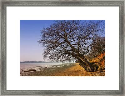 Riverside Framed Print by Svetlana Sewell