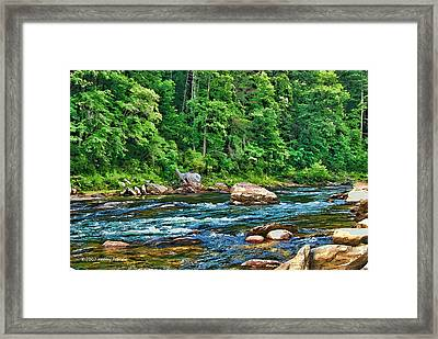 Framed Print featuring the photograph Riverview by Kenny Francis