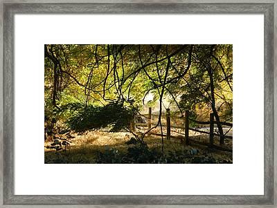 Riverwalk Locust Grove Framed Print
