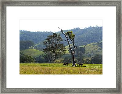 Riverwood Down Framed Print by Sandro Rossi