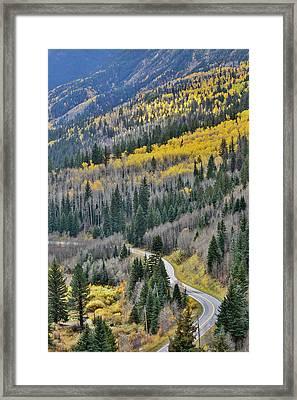 Road Along Crystal River Taken Framed Print