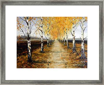 Road And Plowed Land Framed Print by Petrica Sincu