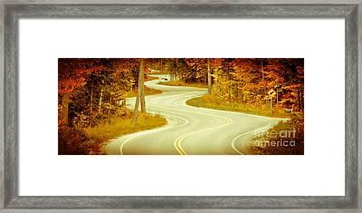 Road Bending Through The Trees Framed Print