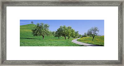 Road Cantone Zug Switzerland Framed Print