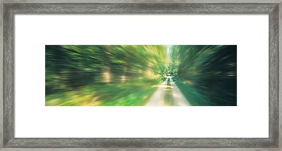 Road, Greenery, Trees, Germany Framed Print by Panoramic Images
