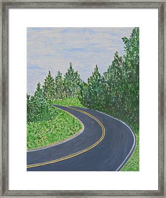 Road In Colonial Park Framed Print