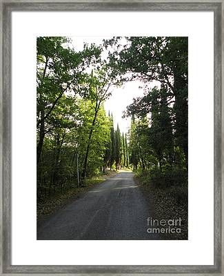 Road In Loppiano Framed Print