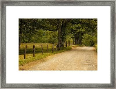Road In The Smokies Framed Print by Andrew Soundarajan