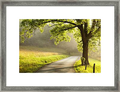 Road In The Woods Framed Print by Andrew Soundarajan