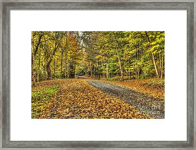 Road Into Woods Framed Print