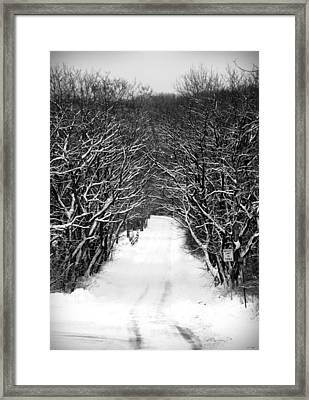 Road Less Traveled Framed Print by Jennifer Compton