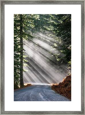 Framed Print featuring the photograph Road Less Travelled by Brian Bonham