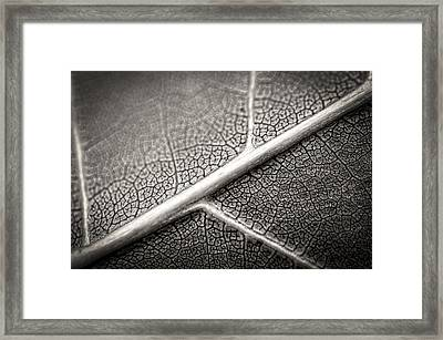 Road Map Of A Restless Mind Framed Print