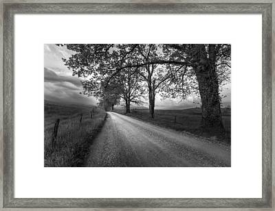 Road Not Traveled Framed Print