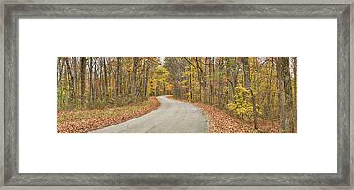 Road Passing Through A Forest, Brown Framed Print