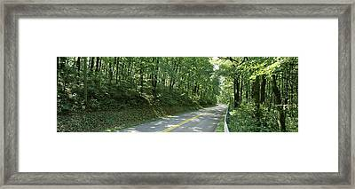 Road Passing Through A Forest, Carroll Framed Print by Panoramic Images
