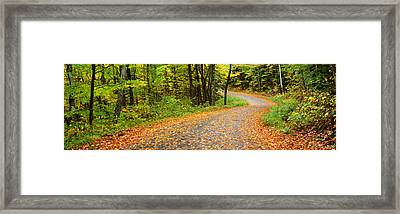 Road Passing Through A Forest, Country Framed Print by Panoramic Images
