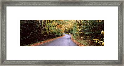 Road Passing Through A Forest, Green Framed Print by Panoramic Images