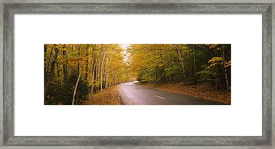 Road Passing Through A Forest, Park Framed Print by Panoramic Images