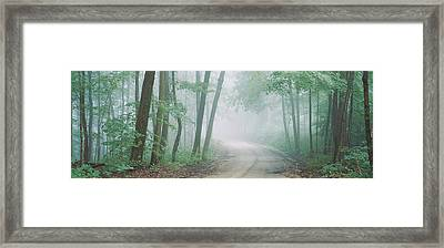 Road Passing Through A Forest, Skyline Framed Print