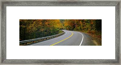 Road Passing Through A Forest, Winding Framed Print by Panoramic Images
