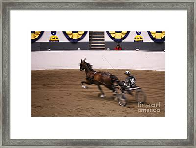 Framed Print featuring the photograph Road Pony At Speed by Carol Lynn Coronios